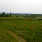 Panorama scomparso causa landgrabbing?